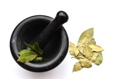 Mortar with Bay leaves. Mortar and Pestle with Herbs and Spices Royalty Free Stock Image