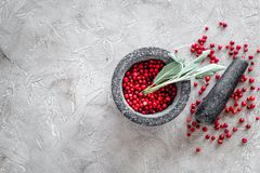Mortar with berries, herbs and spices ingredients on stone background top view mock-up Royalty Free Stock Image