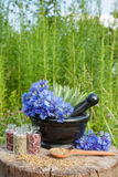 Mortar with blue cornflowers and sage, herbal medicine. Mortar with blue cornflowers and sage hyssop grass on background, herbal medicine royalty free stock photo