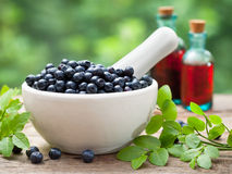 Mortar with  blueberries and bottles of tincture Royalty Free Stock Images
