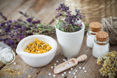 Mortar and bowl of dried healing herbs and homeopathic globules. stock image