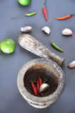 Mortar with Chili Lime and Garlic Stock Image