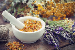 Mortar of dried marigold flowers and healing herbs. Mortar of dried marigold flowers and healing herbs on wooden plank. Herbal medicine stock photo