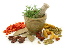 Mortar  dried spices. Mortar with fresh rosemary and dried spices isolated on white background Stock Images