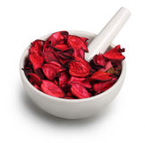 Mortar with dry rose petals. Mortar and pestle with dry rose petals isolated on white background Royalty Free Stock Image