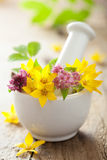 Mortar with flowers and herbs stock images