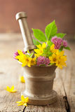 Mortar with flowers and herbs Royalty Free Stock Photos