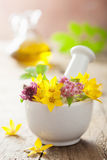 Mortar with flowers and herbs Royalty Free Stock Image