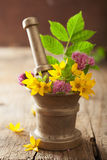 Mortar with flowers and herbs for spa and aromatherapy Royalty Free Stock Images