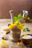 Mortar with flowers and herbs for spa and aromatherapy Royalty Free Stock Image