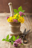 Mortar with flowers and herbs Stock Photography