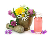 Mortar with fresh flowers and essential oil. Isolated on white background Stock Photo