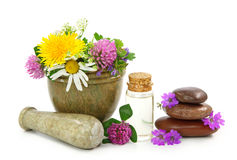 Mortar with fresh flowers and essential oil Royalty Free Stock Image