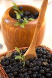 Mortar with fresh forest blueberries. Fresh blueberries in different containers Stock Photography