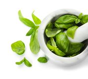 Mortar with fresh green basil leaves on white background. Top view royalty free stock photos