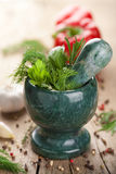 Mortar with fresh herbs Royalty Free Stock Photo