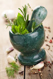 Mortar with fresh herbs Royalty Free Stock Photography