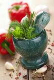 Mortar with fresh herbs Stock Photo