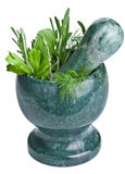 Mortar with fresh herbs isolated Royalty Free Stock Image