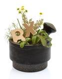Mortar with fresh herbs Royalty Free Stock Photos