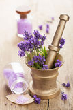 Mortar with fresh lavender and salt Royalty Free Stock Photography