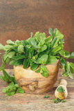 Mortar with fresh mint leaves Royalty Free Stock Image
