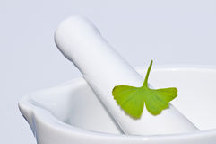 Mortar with Ginkgo leaf Stock Photos