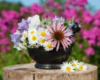 Mortar with healing herbs, herbal medicine Royalty Free Stock Photos
