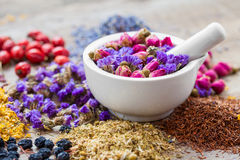 Mortar of healing herbs, herbal tea assortment and dry berries. On table. Herbal medicine royalty free stock photos