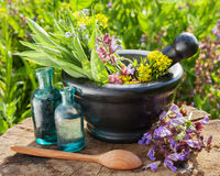Mortar with healing herbs and sage Stock Photography