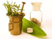 Mortar with herbal, and pills. Royalty Free Stock Images