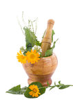 Mortar with herbs. And marigolds isolated on white Stock Photography