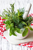 Mortar and herbs. Stock Photography