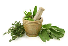 Mortar with herbs Royalty Free Stock Photo