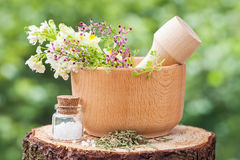 Mortar with herbs and bottle of homeopathy globules Stock Photo