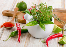 Mortar with  herbs and chili peppers Stock Images