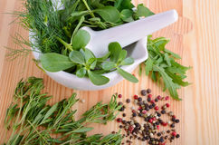 Mortar with herbs Royalty Free Stock Image