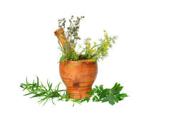 Mortar with herbs. Mortar with culinary and medicinal herbs  on white Stock Photo
