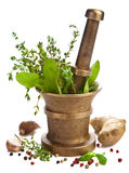Mortar with herbs isolated Royalty Free Stock Image