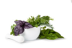Mortar with herbs Royalty Free Stock Photography