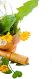 Mortar with herbs and marigolds Royalty Free Stock Photo
