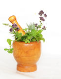Mortar with herbs Royalty Free Stock Photos