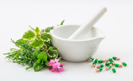 Mortar, herbs and pills on white background Royalty Free Stock Photo