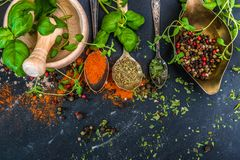Mortar with herbs and spices Stock Photography