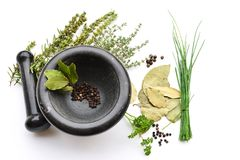 Mortar with Herbs and Spices. Mortar and Pestle with Herbs and Spices Stock Photos