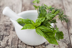 Mortar with herbs  Stock Image