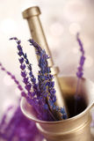 Mortar with lavender Stock Photo