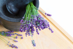 Mortar with lavender flowers, herbal medicine Royalty Free Stock Images