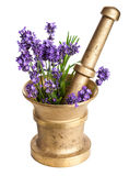 Mortar with lavender isolated Royalty Free Stock Images