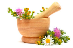 Mortar, medicine herbs and flowers Stock Photography